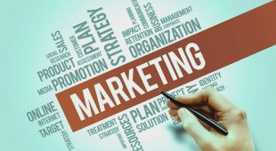 Understanding the Essentials to Successful Marketing