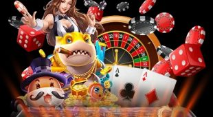 Online Casino Selection and Availability