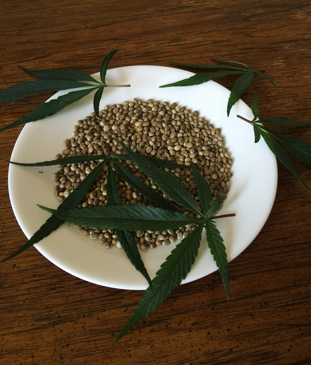 Desire An Executive Health 24/7? Get The Best Cannabis Seed Info Here